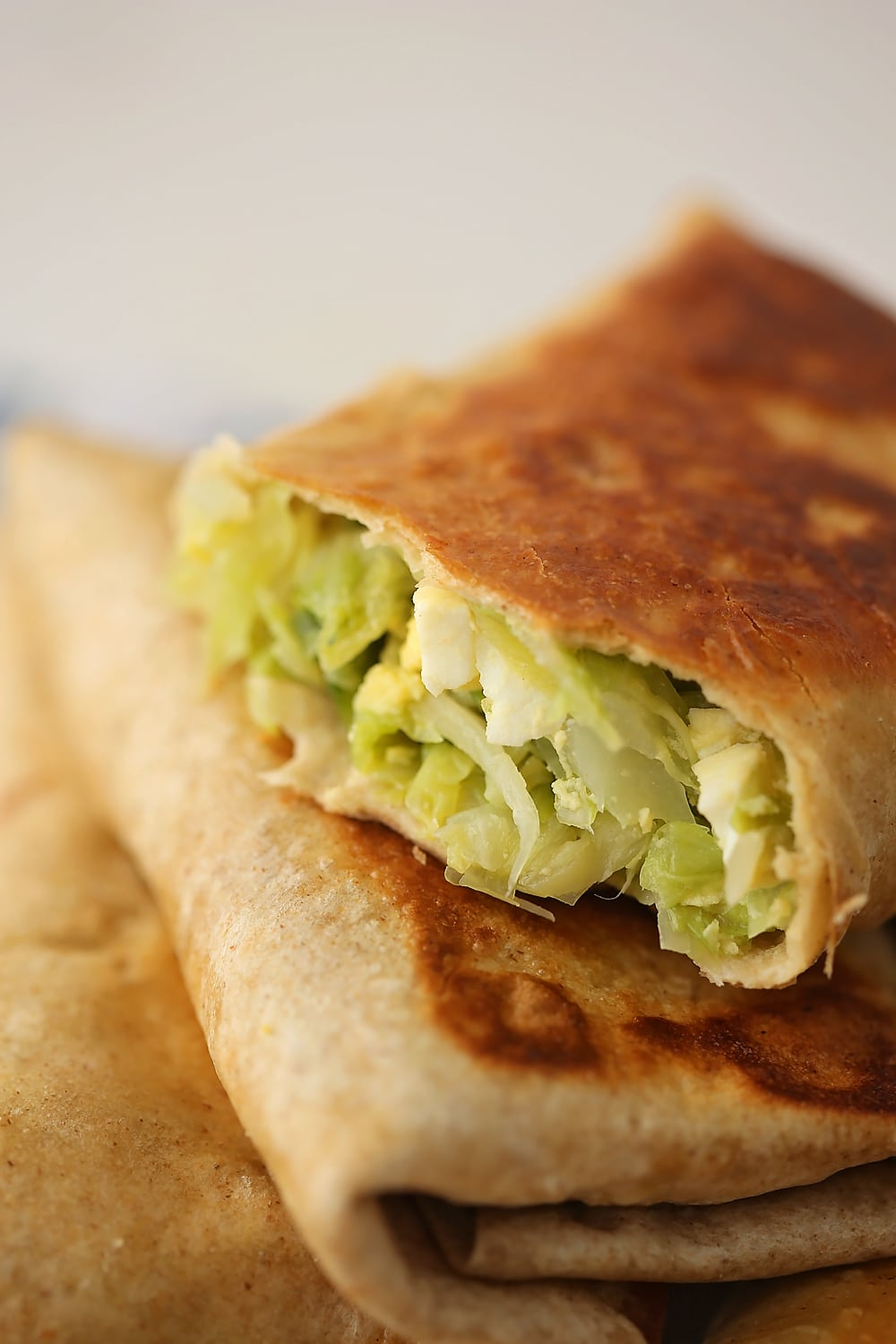 close up shot of tortilla with cabbage stuffing inside