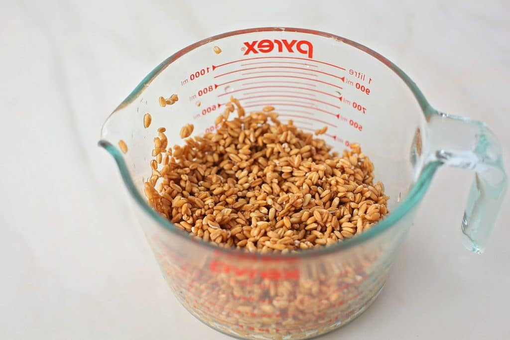 rinsed farro in the measuring cup