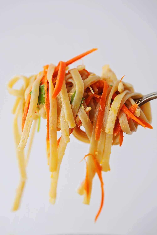 noodles rolled on the fork