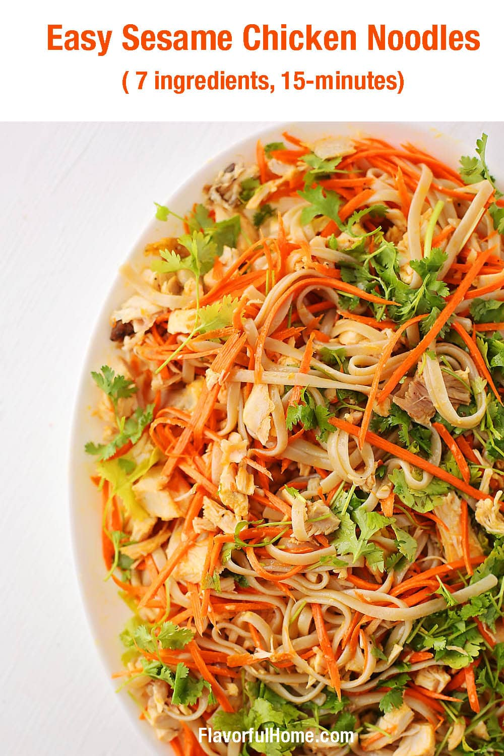 large dish with noodles, carrots, cilantro, chicken, and nuts