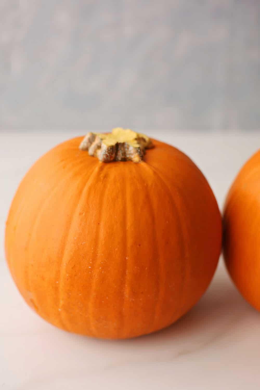 one small orange pumpkin