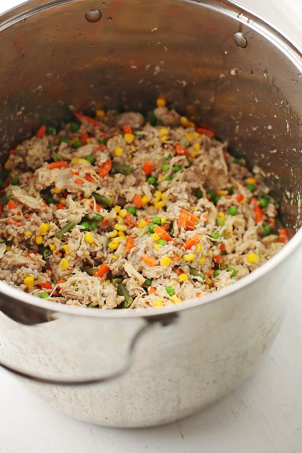 large pot filled with homemade dog food