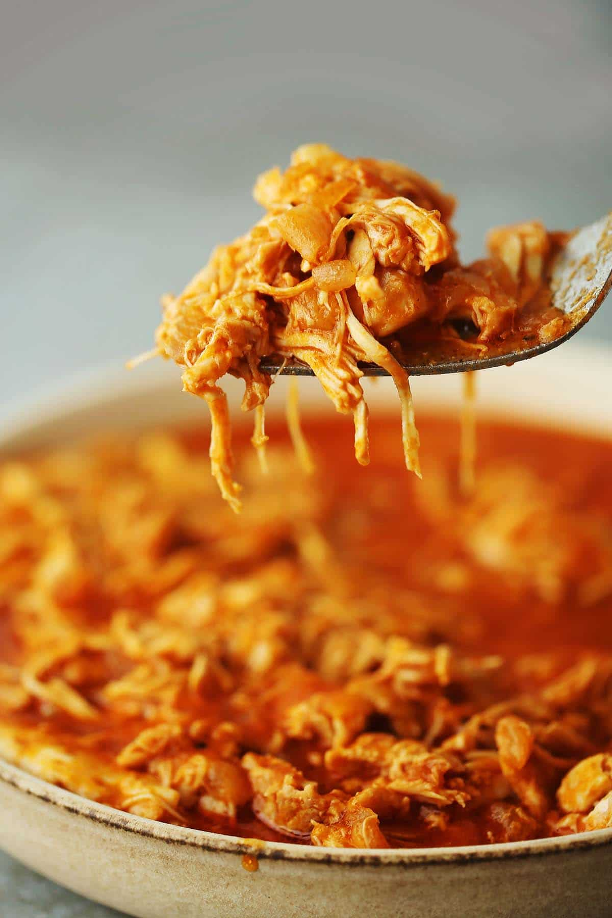 close up image of fork with pulled chicken meat